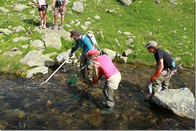 pêche électrique du Bon Nant à la sortie du lac