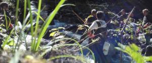 Domaine-piscicole